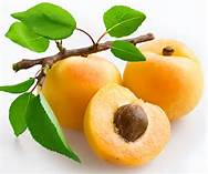 apricot kernels,apricot seeds,B17,laetrile,
